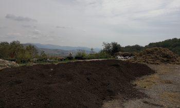 Analisi su Compost